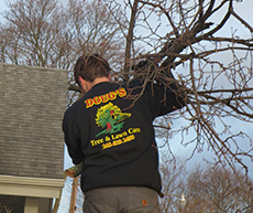 Christian Bauer, Groundsman, Doug's Tree and Lawn Care
